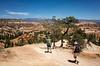 Queen's Garden/Navaho loop trail