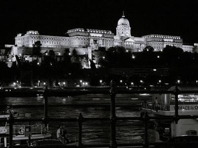 Danube and the Royal Palace at night