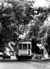 A historic tramway runs alongside a street of Caballito city district, Buenos Aires, Argentina, January 5, 2005. (Austral Foto/Renzo Gostoli)