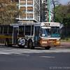 Bus on Plkaza Italia