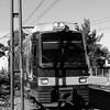 Tren de la Costa arriving in Tigre