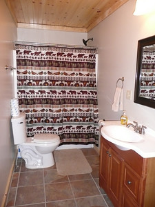 Mike and Diane's bathroom.