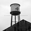 Buffalo Trace Distillery Tower Black White