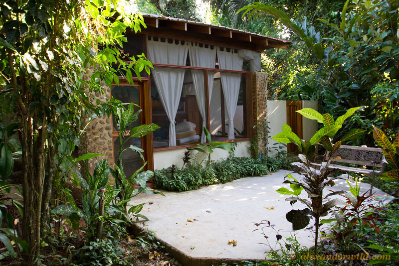 Our basic accommodation for BugShot will be the Suites. These clean, well-appointed cabins can each hold 4 people  with a common sitting area and front veranda. As will all lodging, the suites are surrounded by forest and the walls are screened.