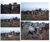 Bull Jumping-89