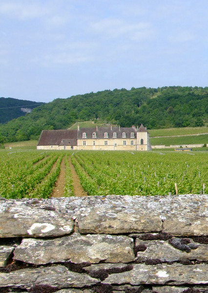 A chateau behind an ancient rock wall in the Burgundy Wine Region.