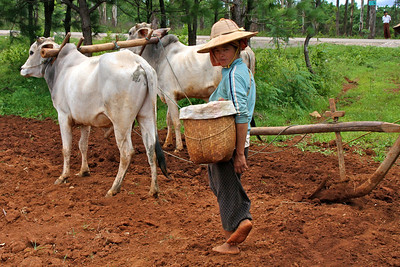 Burma/Myanmar - July 2012