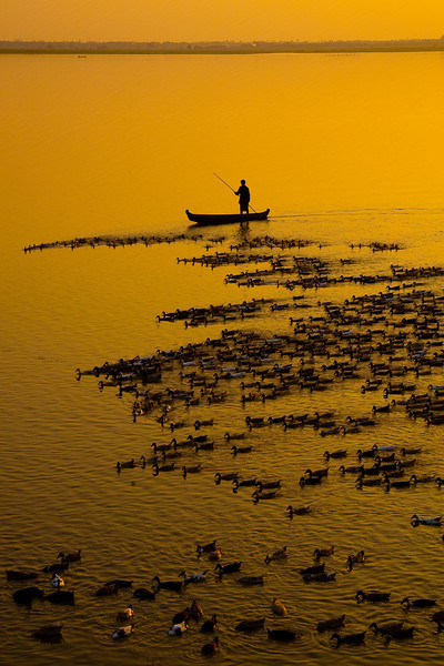 Farmer with a herd of ducks at Taungthaman Lake, Amarapura