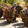 Farmers near Popa Taung Kalat