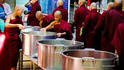 it takes a lot of rice to feed a couple hundred monks.