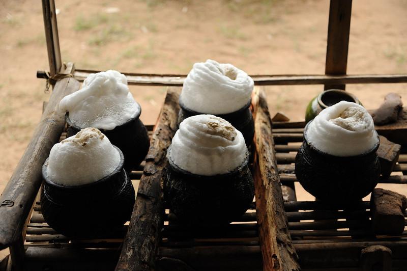 Fermenting palm wine