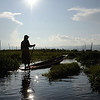 On Lake Inle among the cultivated floating gardens