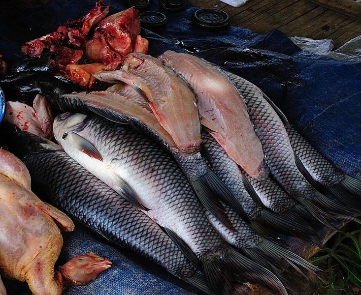 Fresh fish at the Market in Pindaya