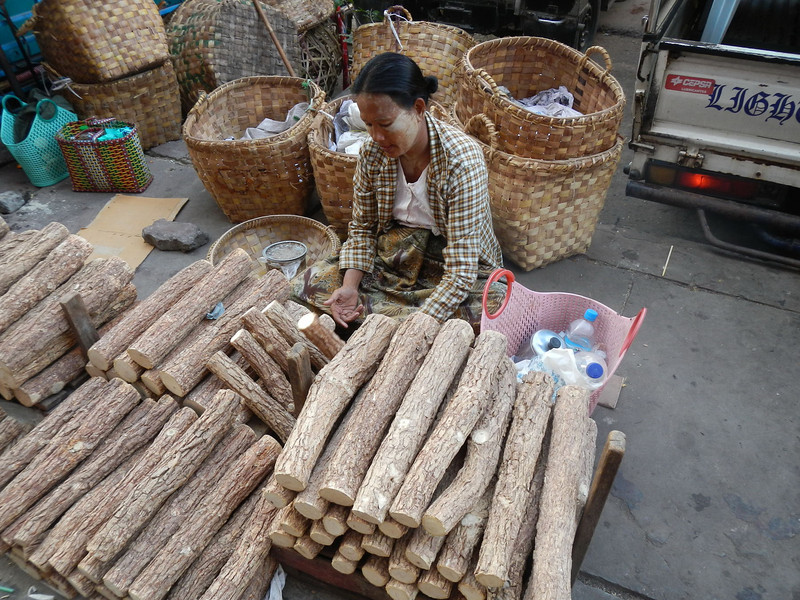 Sandalwood logs, the bark of which is ground to make thanaka paste which is used as a cosmetic in Burma