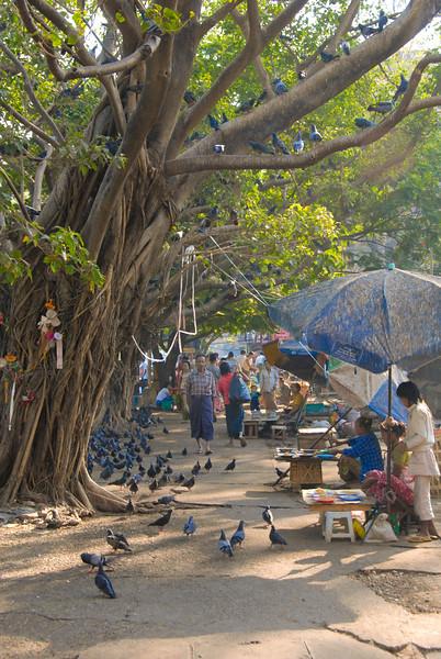 Rangoon - 2008-105