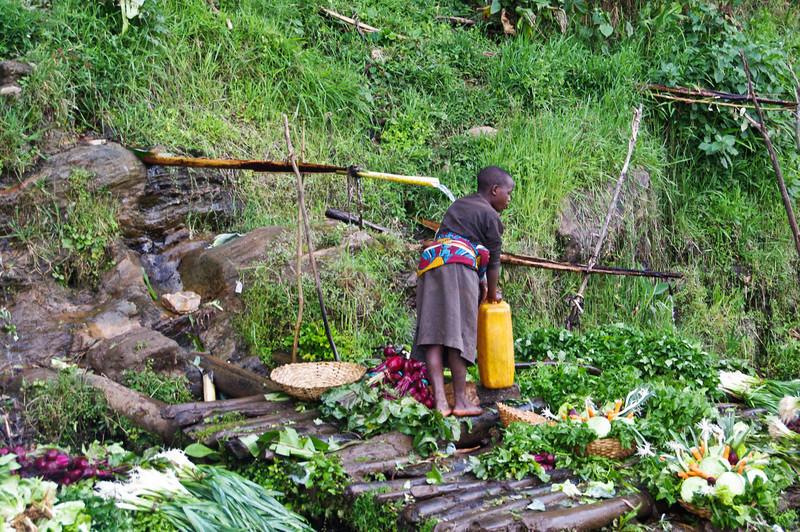 Mädchen wäscht Gemüse mit frischem Quellwasser