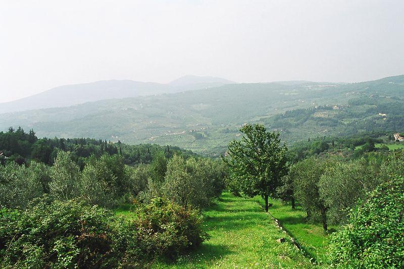 Florence / Tuscany