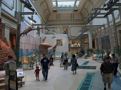 Inside the National Museum of Natural History