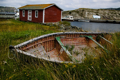An old boat lies in the weeds in a small Newfoundland Community