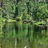 Merced River - Yosemite Valley, CA