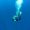 Gordo Banks Diving - Cabo San Lucas