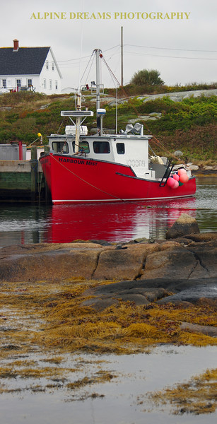 SEA GRASS AND SLEEPING BOAT IN PEGGYS COVE