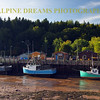 BOATS IN THE FLATS BAY OF FUNDY