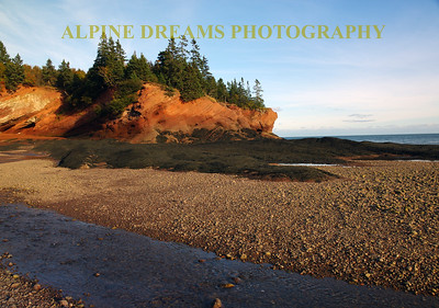 BAY OF FUNDY MUDFLAT BEAUTY