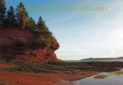 CARVED OUT CLIFFS OF BAY OF FUNDY