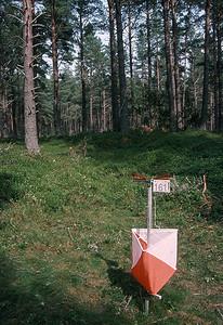 An elusive orienteering kite at Smokey Lake