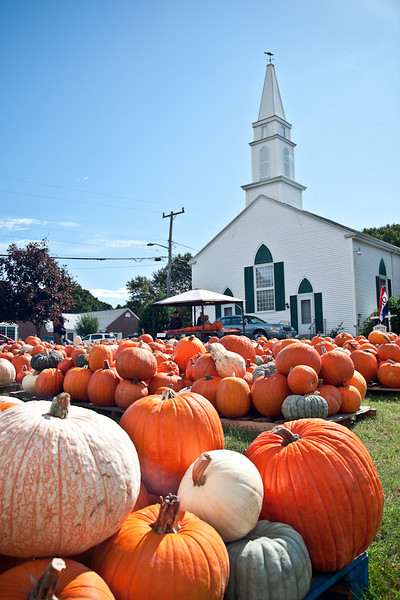 PUMPKIN PATCH-HARWICH