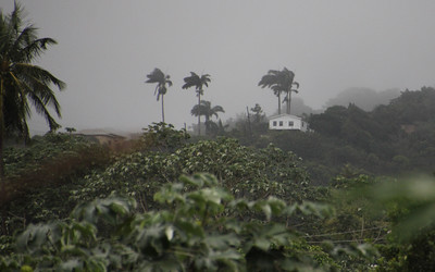 full downpour all day in Grenada