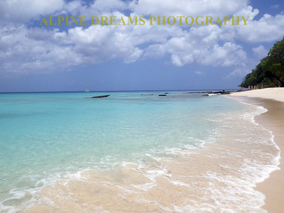 BARBADOS BEACH BEAUTY