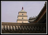 Roof detail and pagoda...
