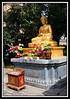 Budda...