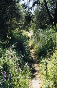 San_Juan_Loop_Trail0002