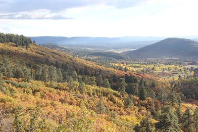 Fall color in area