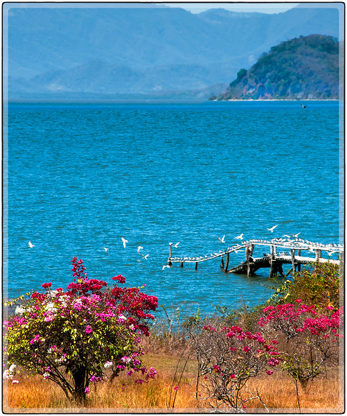 The Gulf of Nicoya