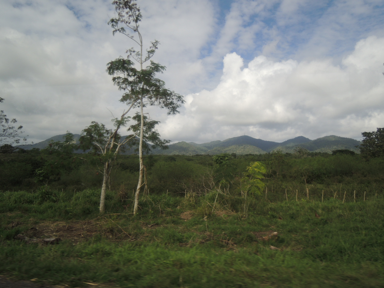 View from the bus window as we were in the countryside West of Havana.