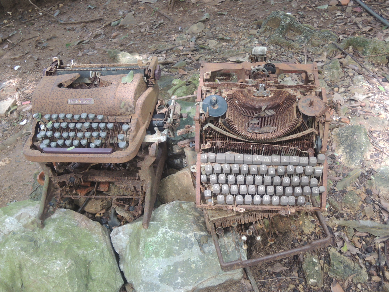 Old typewriters never quite die.