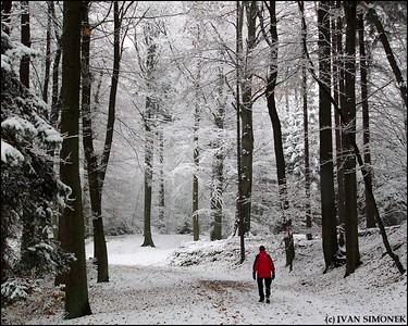 """""""A WHITE SURPRISE"""", Czech Paradise area, Czech Republic."""
