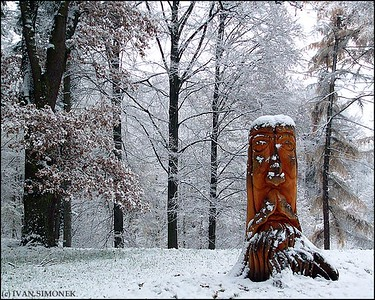 """CARVED STUMP2"", Czech Paradise, Czech Republic."