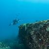 Diver - Dive 12 of 12 - Pedregal Norte