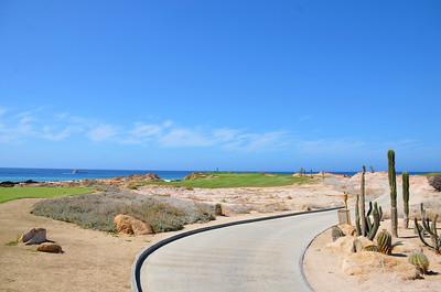Cabo del Sol Ocean Course #6 par three.