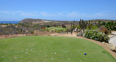 Cabo del Sol Ocean Course, the par 3 #13 from the tee.
