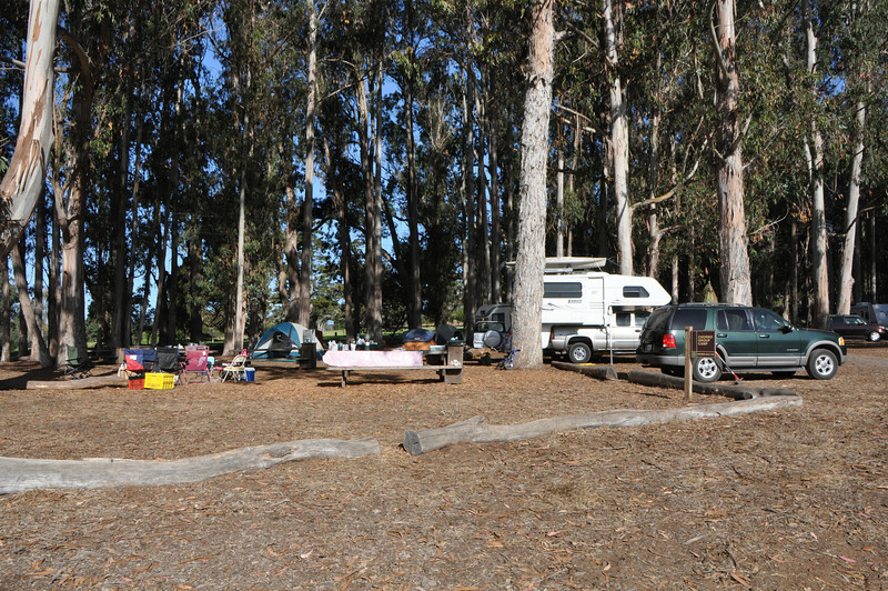 """The """"Chorro"""" group camp site at Morro Bay campground."""