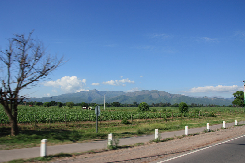 Still in the North-West of Argentina, I'm leaving the town of Salta, heading south to the village of Cachi, in the Andes