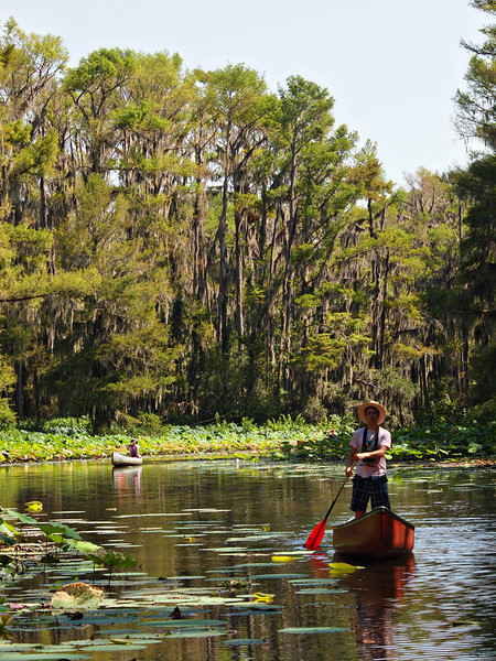 Canoeing Caddo Lake