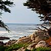 California Coast Trip NOV 2010.  Just outside Carmel by the Sea