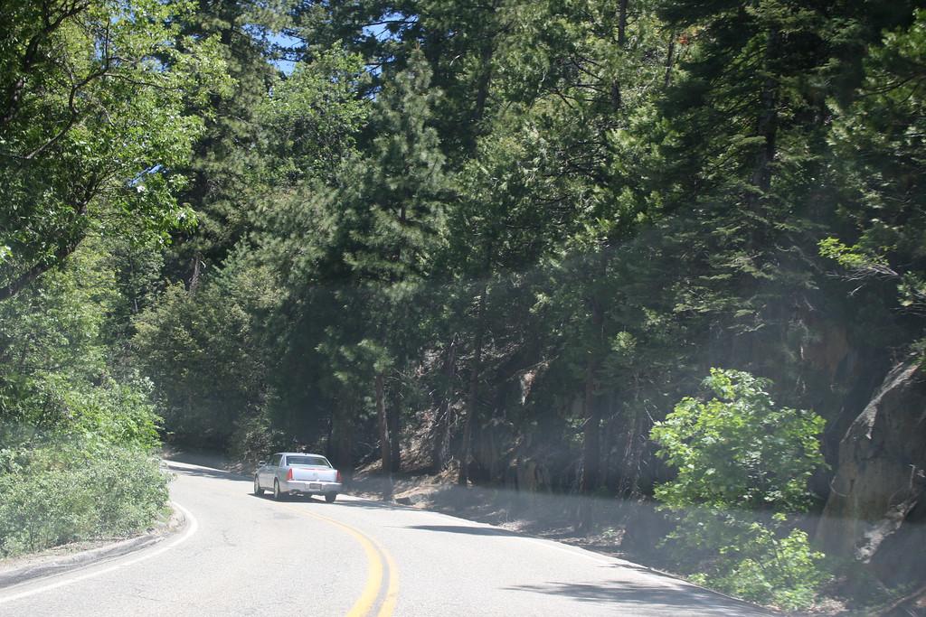 Driving into Yosemite National Park.